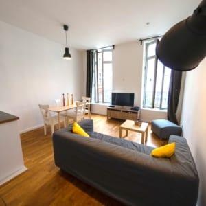 grand salon équipé et moderne dans une colocation