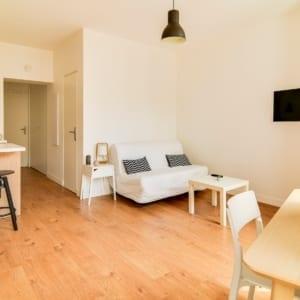 grande pièce dans un appartement t1 meublé moderne