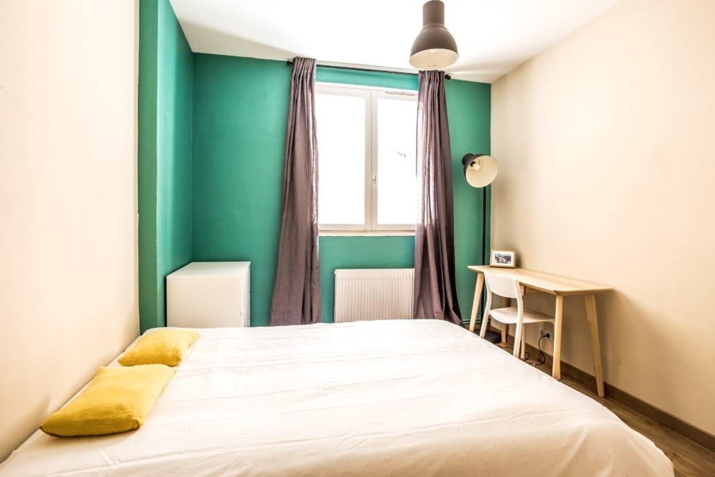 Very nice bright room in a shared flat in Paul Bert street Lyon